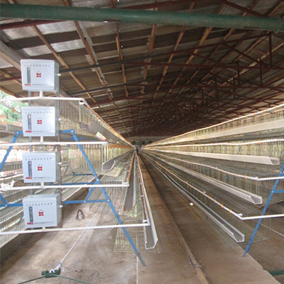 Poultry mesh production line