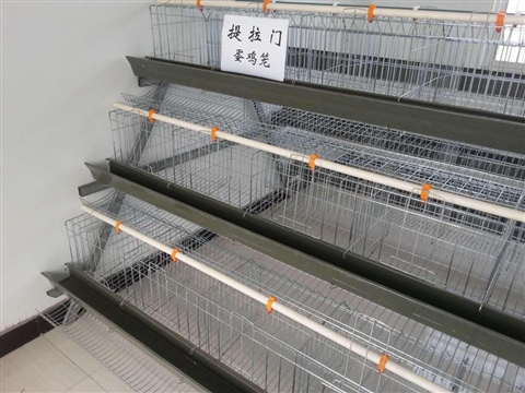 Animal cage production line